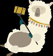 En lama som tar en selfie.